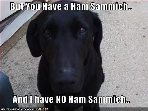 [Image: ham_sammich.jpg]